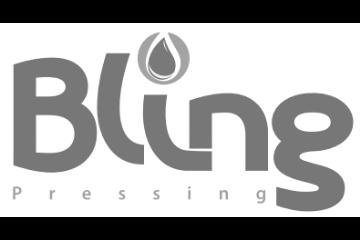 bling_logo